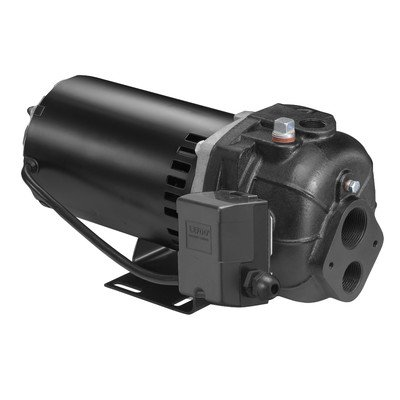 Wayne deep well jet pump 278 gph 1 2 hp 1 1 4in for Well pump motor replacement