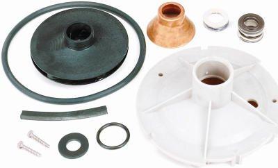 Repair well pumps parts pentair water fpp1523 p2 jet pump overhaul repair kit sciox Image collections