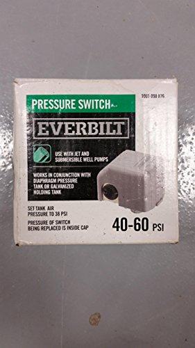 everbilt well pump